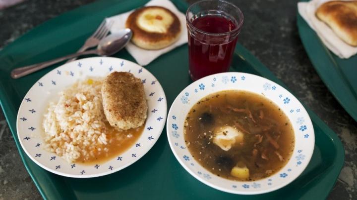 Ярославские депутаты хотят увеличить субсидии на школьные завтраки