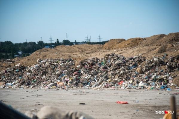 Много скандалов было из-за мусорных полигонов