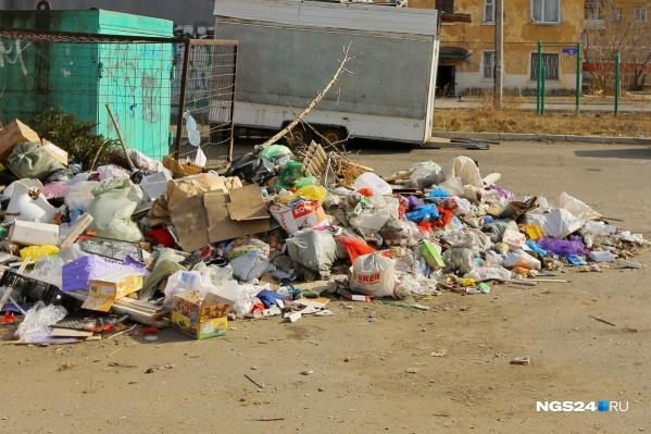 Если выброс мусора в неположенном месте попал на камеру, за это можно получить штраф