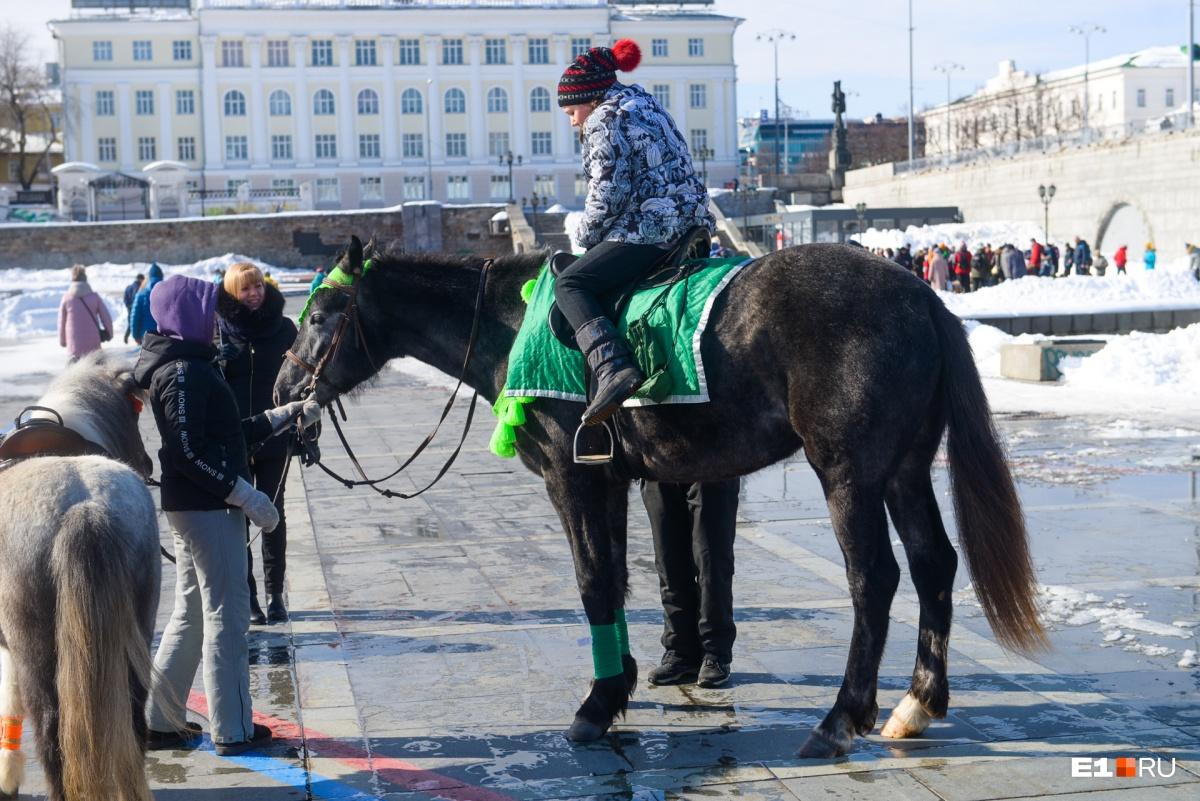 Даже конь в зелёном. Екатеринбуржцы привлекают весну (настоящую, а не календарную) как могут!