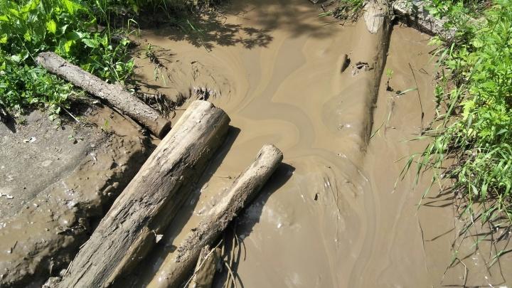 Пермяки пожаловались на загрязнение реки Данилихи — это третий случай за неделю