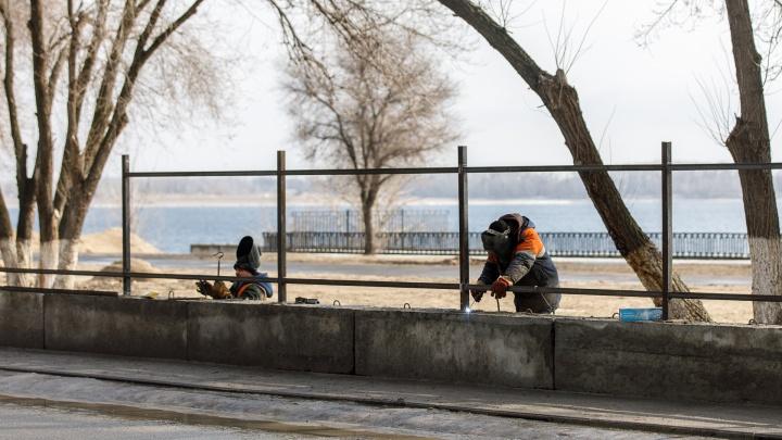 Асфальт вместо зелени: деревья на набережной Волгограда меняют на большую парковку