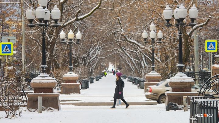 Начало зимы в Екатеринбурге будет теплым и без снега