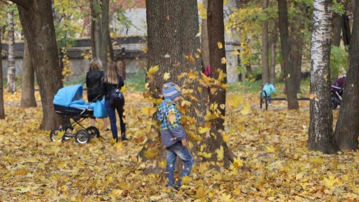 Новые парки в Нижнем Новгороде будут. Если чиновники разрешат и примут нужные документы