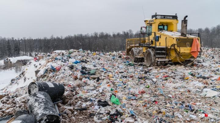 «Буматика», обслуживающая мусорный полигон в Краснокамске, подала второй иск к правительству края