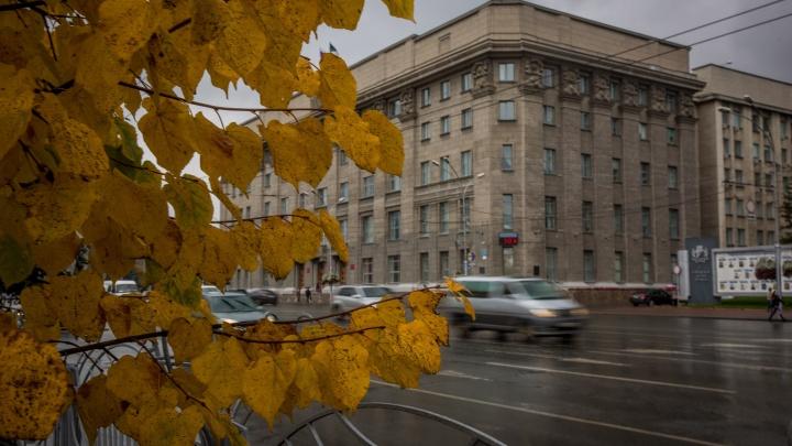 В Новосибирске объявили штормовое предупреждение из-за заморозков
