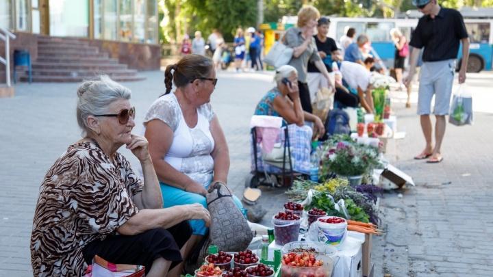 Счастливая двадцатка: на Центральном рынке Волгограда установили лимит на дачников
