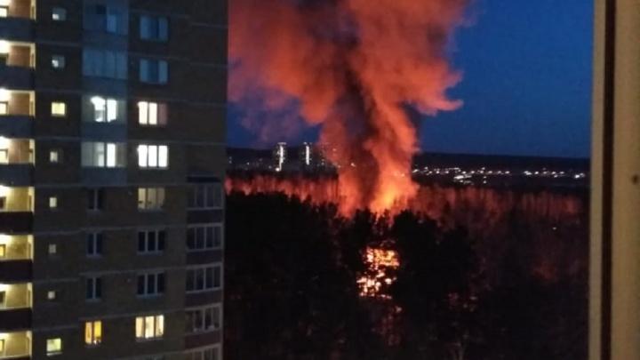 Огонь перекинулся на лес: на Химмаше второй день подряд горят дома рядом с многоэтажками