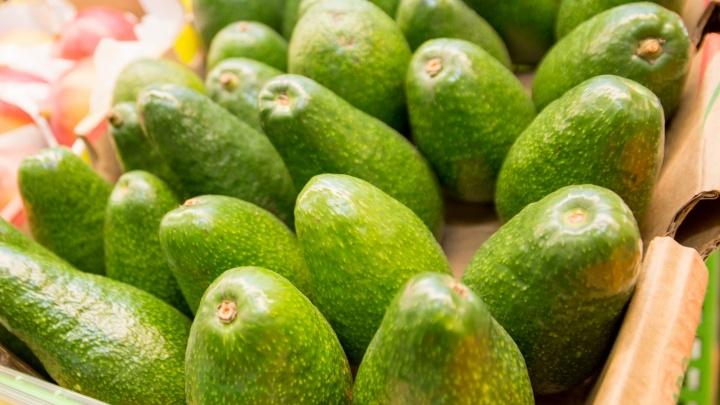 Райское наслаждение: Коста-Рика хочет поставлять в Самару экзотические фрукты и кофе