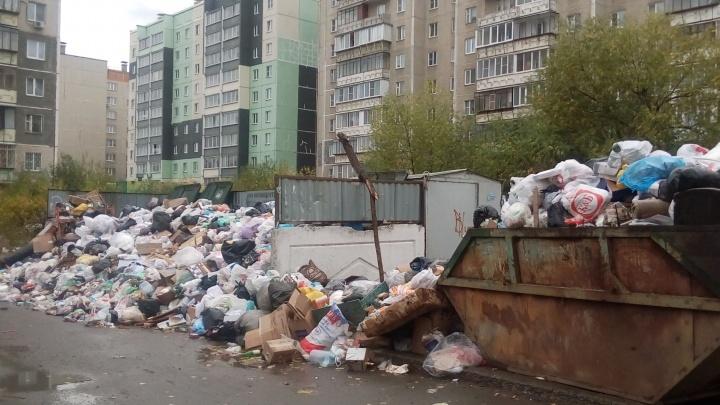 «Входим в график»: Тефтелев попросил у челябинцев отсрочку с вывозом мусора
