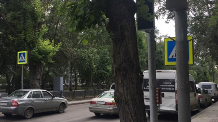Надёжно спрятали: на Восходе новый светофор поставили за деревом