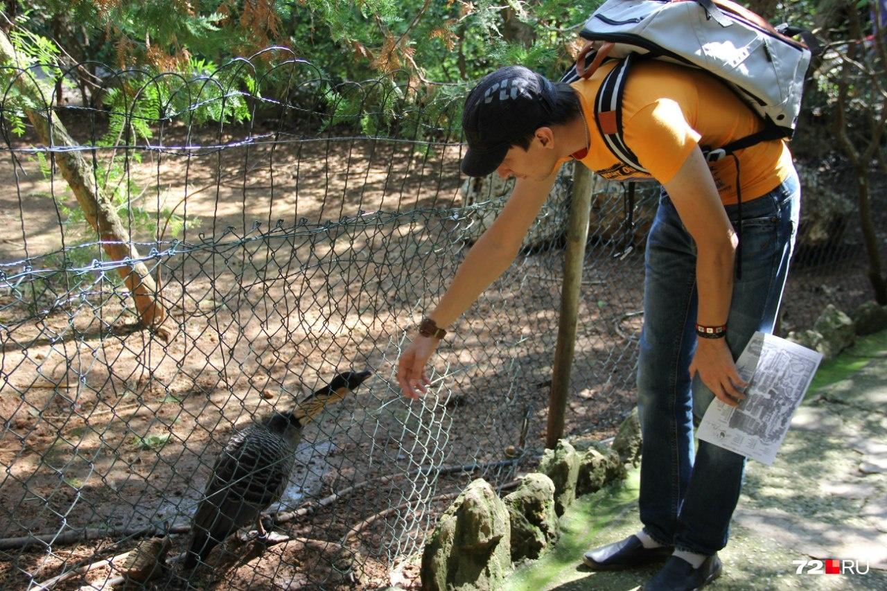 Обитатели зоопарка воспитанные, почти ручные. Обожают, когда к ним приходят гости