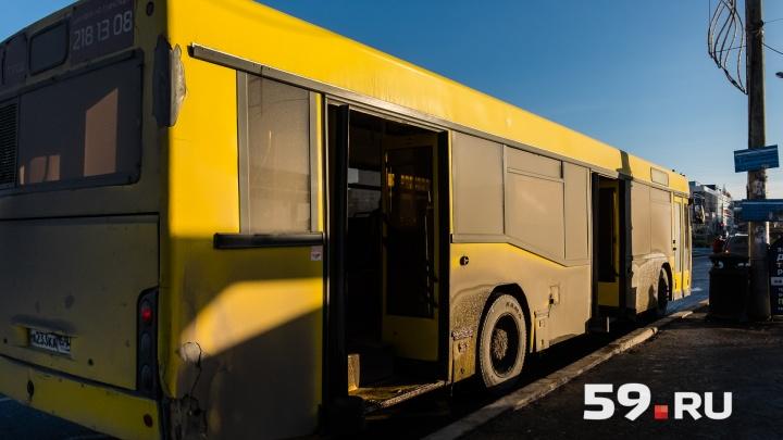 У одного из автобусных маршрутов в Перми изменится схема движения. Рассказываем, как