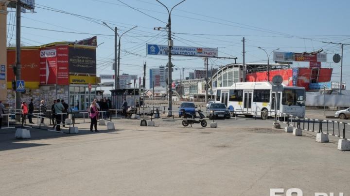 В Прикамье запретили рекламные растяжки над дорогами и щиты на крышах домов