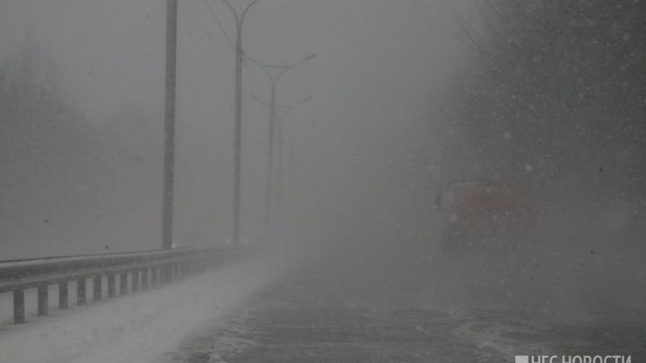 Водители жалуются на плохую видимость и сильные метели на трассах