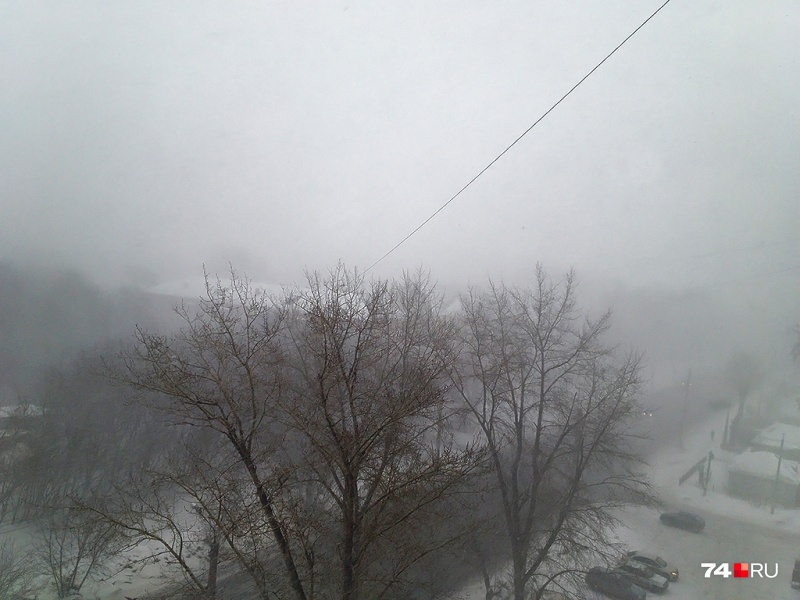 Ожидается, что в западных районах региона снег будет выпадать по шесть миллиметров в час и более