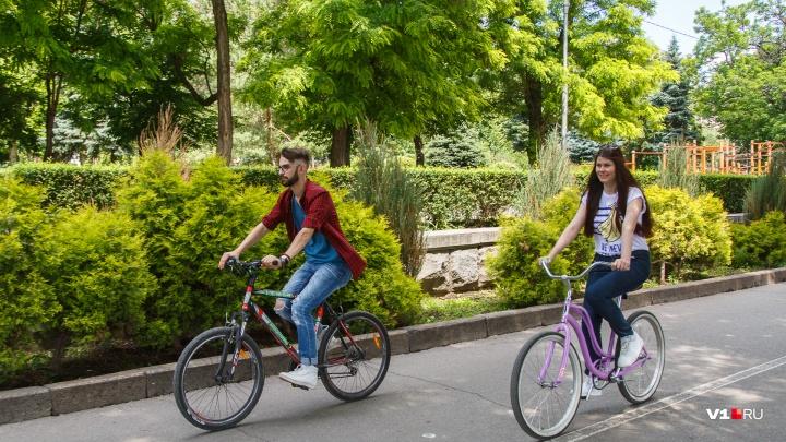Волгоградские полицейские объявили охоту на велосипедистов
