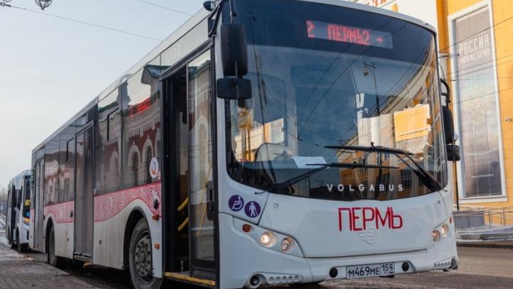 Власти Перми отложили изменение автобусных маршрутов №2 и 3 до Перми I