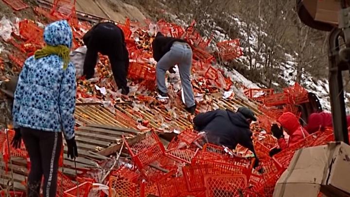 Собранные мародерами мандарины с разбившегося грузовика в Канске выставили на аукционах