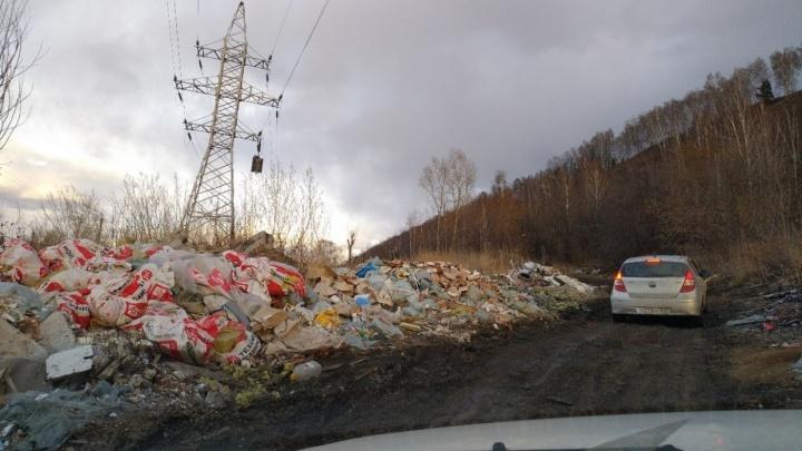 Деньги из воздуха: мусорщики просто так собирали деньги с сотен красноярцев и не вывозили отходы
