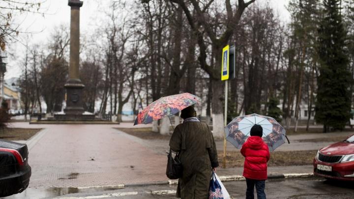 На Ярославль обрушатся весенние дожди: синоптики рассказали, когда прекратятся осадки