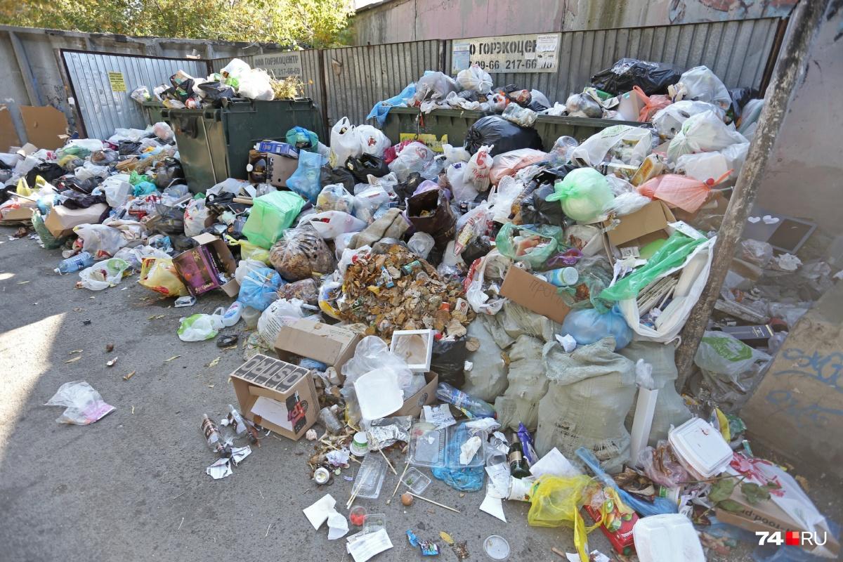 Челябинск начал зарастать мусором с 11 сентября, после закрытия челябинской свалки