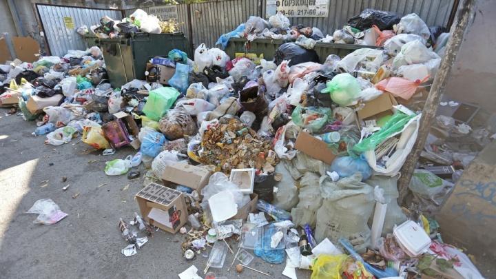 «Полный беспредел»: челябинцам выставили счета за весь месяц мусорного коллапса