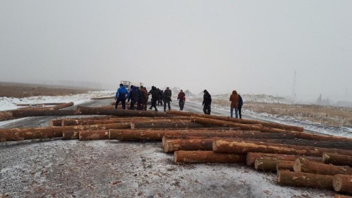 Причины аварии лесовоза в Кетовском районе выясняет полиция