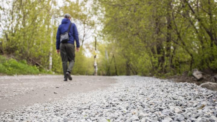 Троих пропавших подростков нашли в 140 км от Новосибирска — они шли пешком двое суток и голодали