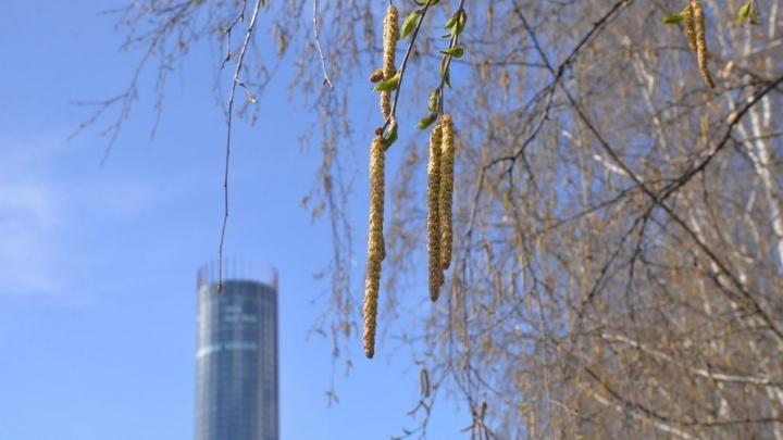 Конец ледникового периода: в Екатеринбург придут летнее тепло и небольшие дожди