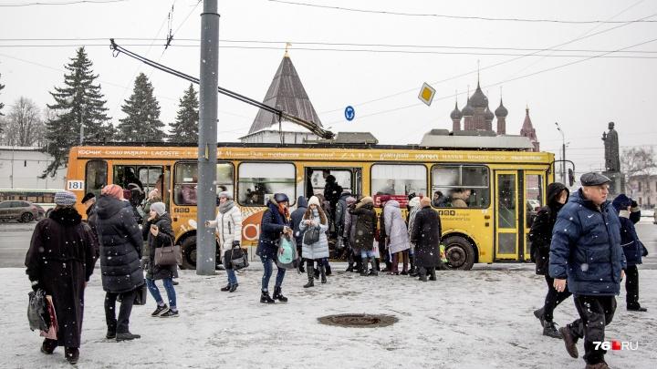 «Так и будут дёргать при каждом новом мэре?» Ярославцы требуют оставить троллейбус №6