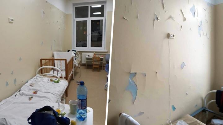 Прокуратура проверит, почему в челябинской больнице после капремонта облупилась краска