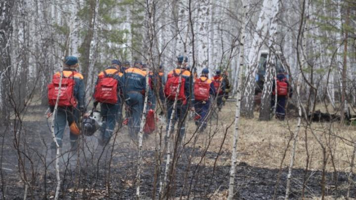 В Курганской области по фактам майских пожаров возбуждено более десятка уголовных дел