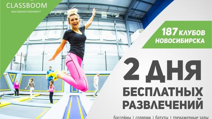 Все выходные бассейны и фитнес-клубы Новосибирска будут пускать горожан бесплатно