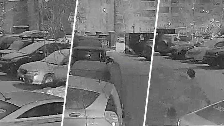 Водитель на машине «Яндекс.Такси» украл аккумулятор из чужих «Жигулей» и попал на видео