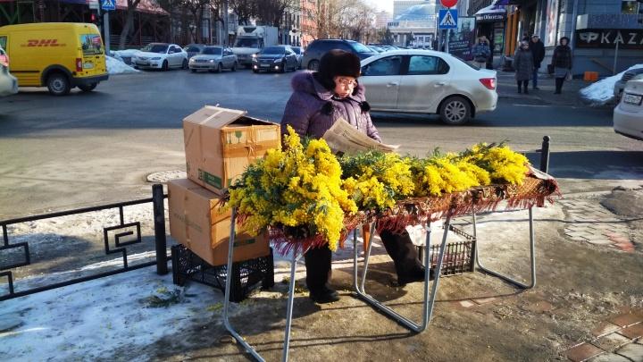 На улицах Новосибирска начали торговать праздничными цветами