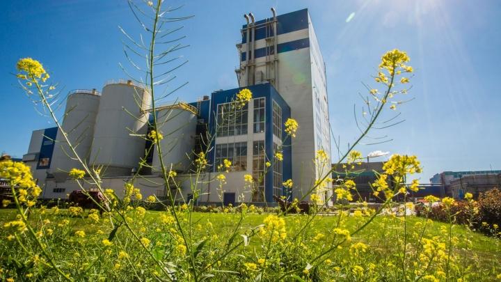 За пять лет сэкономили более 850 миллионов рублей: на АЦБК посчитали выгоду от работы котла Valmet