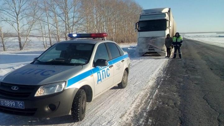 Фура с лошадьми заглохла на трассе в Новосибирской области из-за перемёрзшего топлива