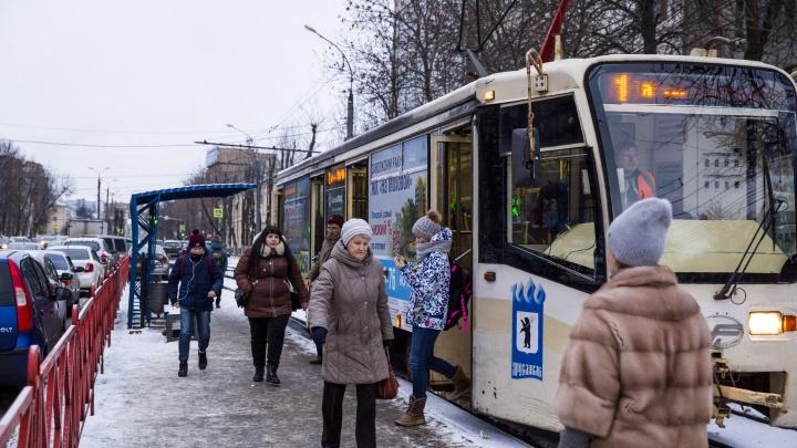 Чиновники разрешили многодетным родителям ездить бесплатно в общественном транспорте. Но не всем