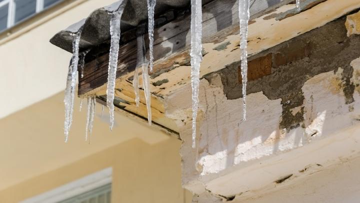 Температура пойдёт в плюс: синоптики дали предварительный прогноз на март