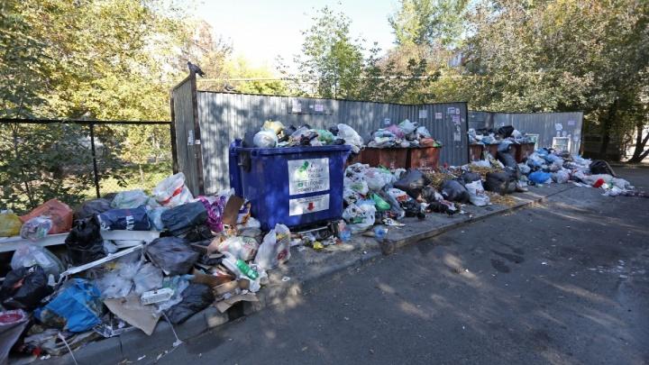Невозможно подать заявку: в Челябинске приостановили аукцион на перевозку мусора за полмиллиарда