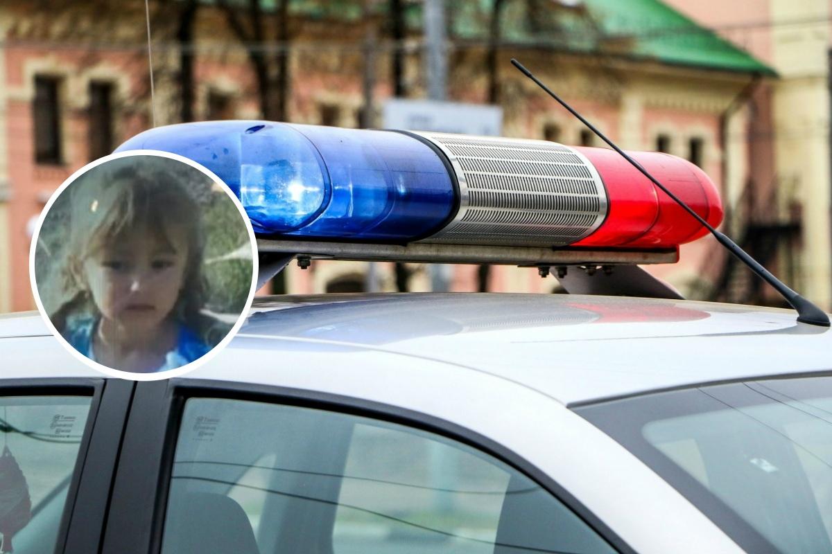 Пропавшую девочку ищут более 500 человек