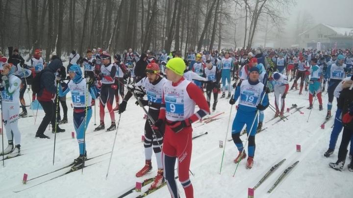 Все на лыжню! В Самаре на марафоне «Сокольи горы» собрались участники из 48 регионов России