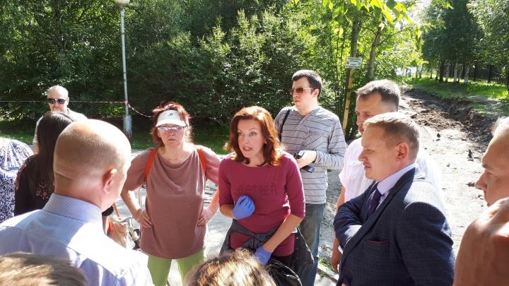 «Не хотели прислушиваться»: архангельские активисты следят за судьбой деревьев в парке на Галушина