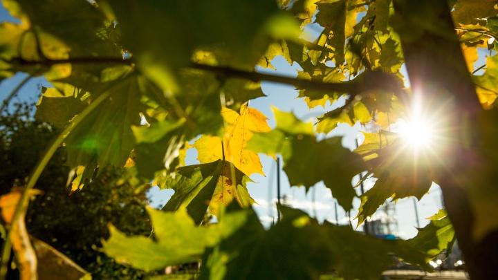 Долгое бабье лето, потом резкий холод: точный прогноз погоды на сентябрь