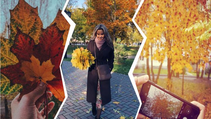 Гуляют в золотом лесу, прыгают в листву и кутаются в пледы. 15 кадров тюменцев, влюбленных в осень