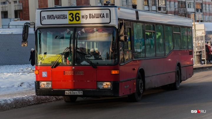 В Перми изменится схема движения восьми автобусных маршрутов