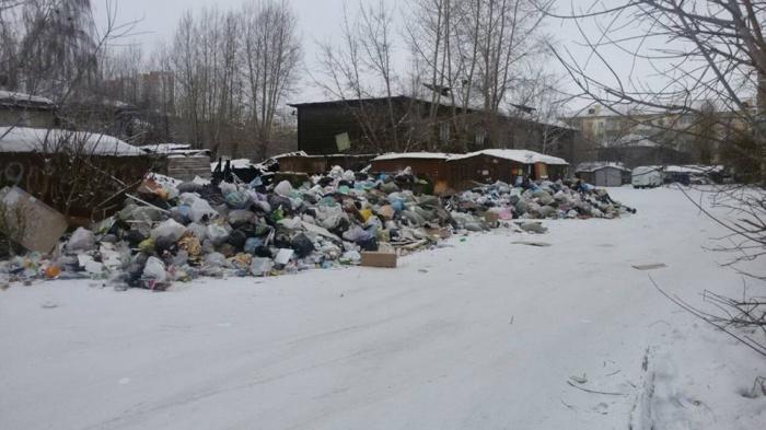 Напротив стихийной свалки на Базайской установили камеры и будут штрафовать за выброс мусора
