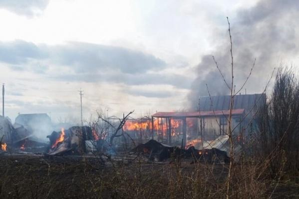 В считанные часы стихия уничтожила пять домов