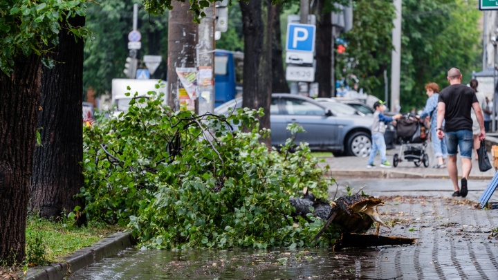 Снова без солнца: МЧС предупреждает о дождях, грозах и сильном ветре в Прикамье